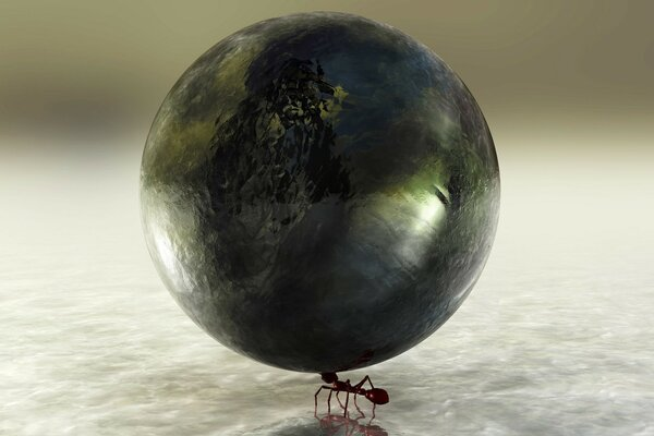 The ant and the earth
