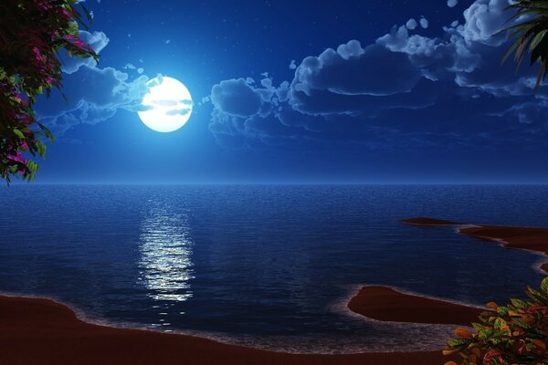 Night, moon, island