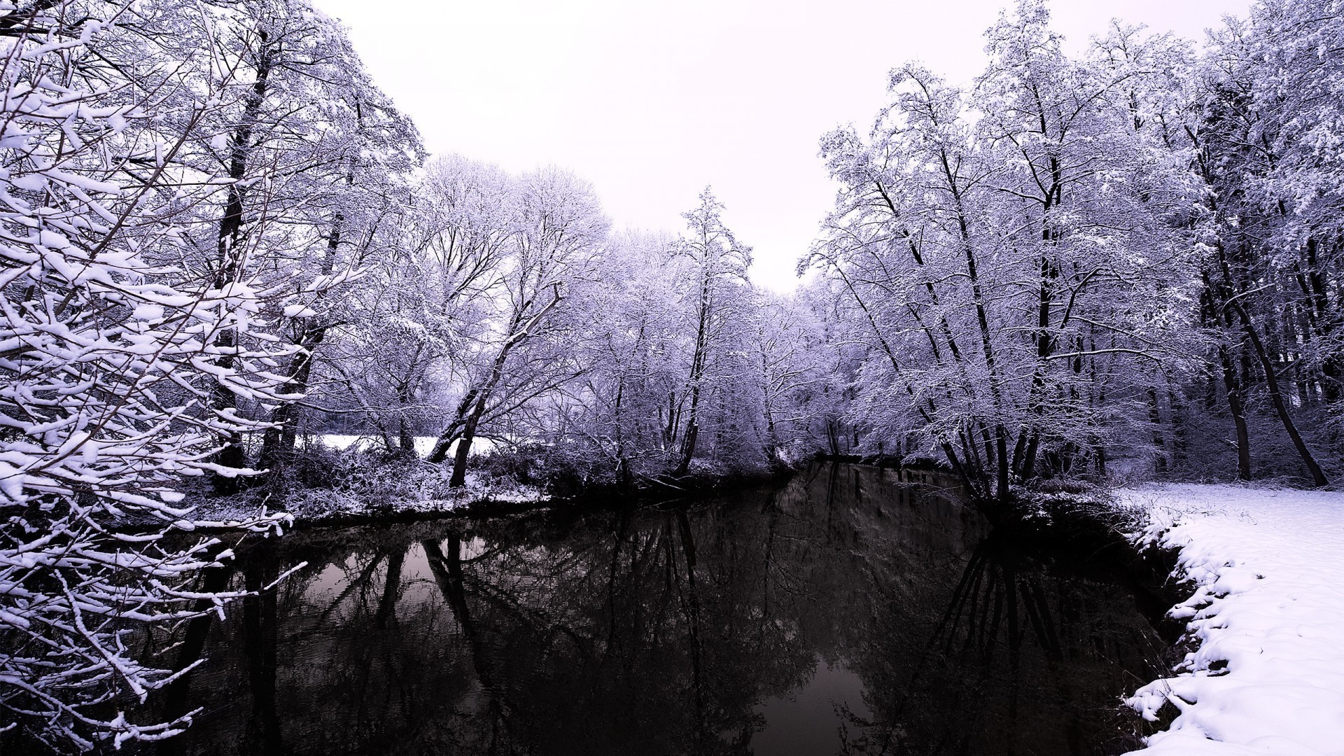 rivers ponds and streams tree winter wood snow landscape cold nature frost park scenic season ice branch fog scenery outdoors frozen