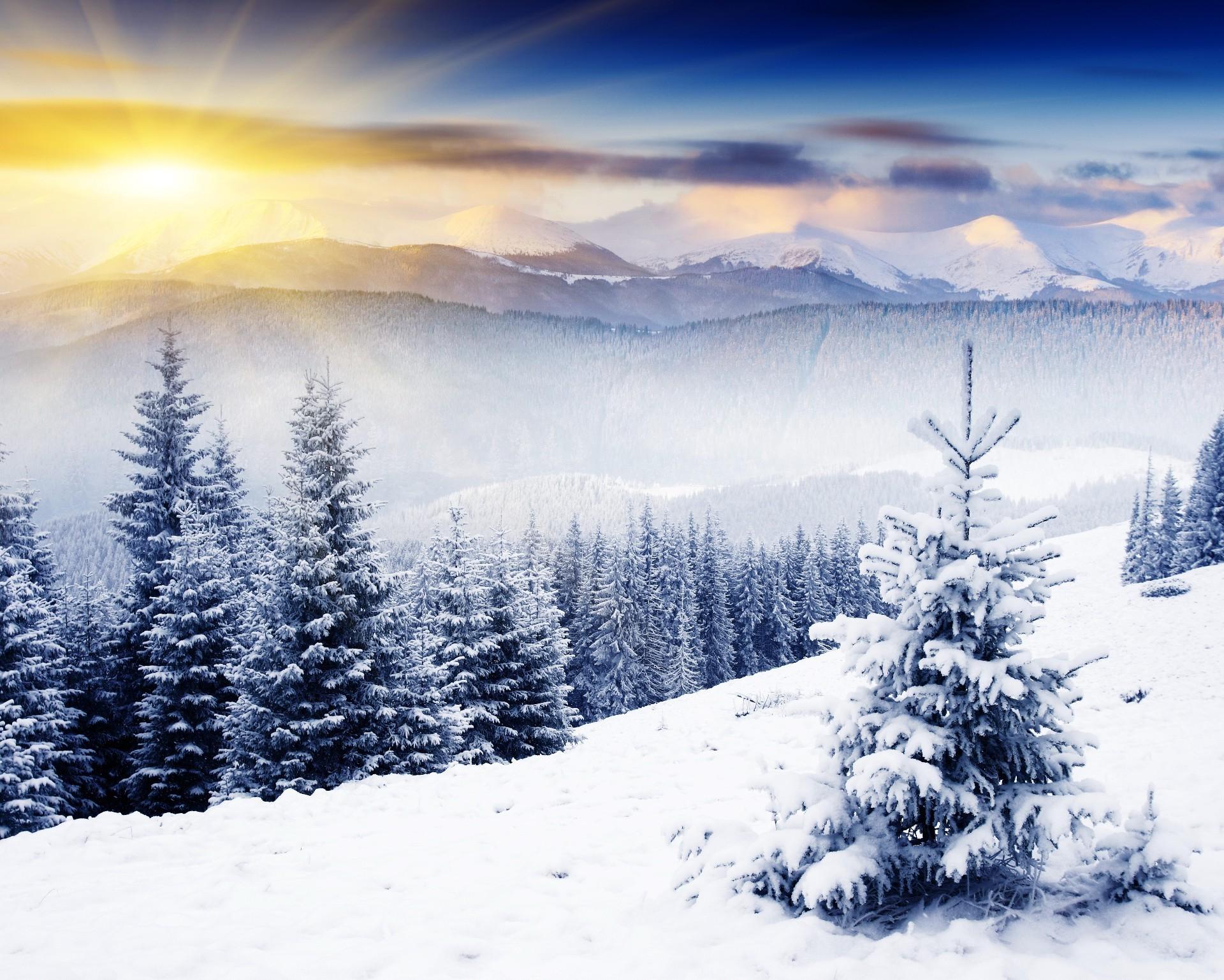 Cool Wallpaper Mountain Christmas - 9842330827880838779  2018_257659.jpg