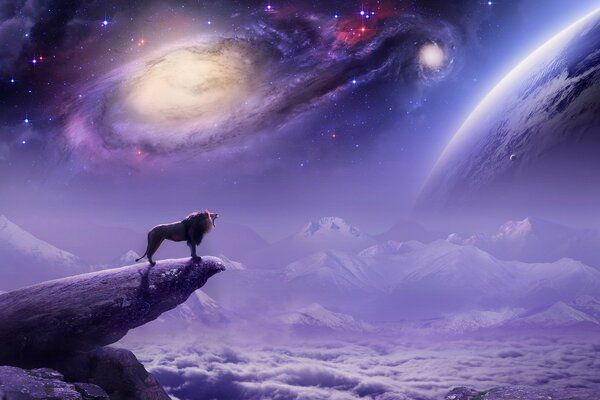 Space, wolf, clouds, rock