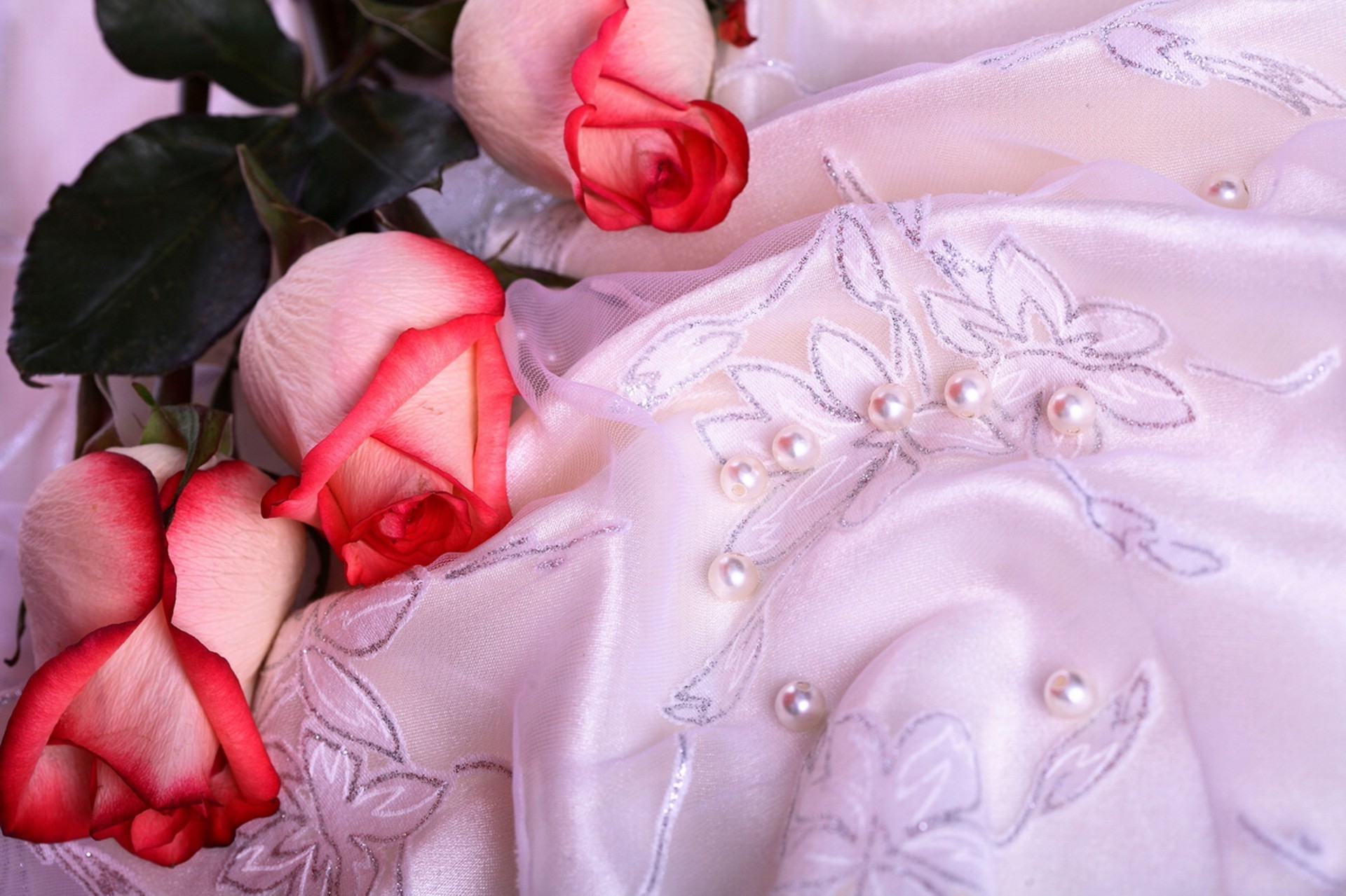 Beautiful roses on transparent tablecloth