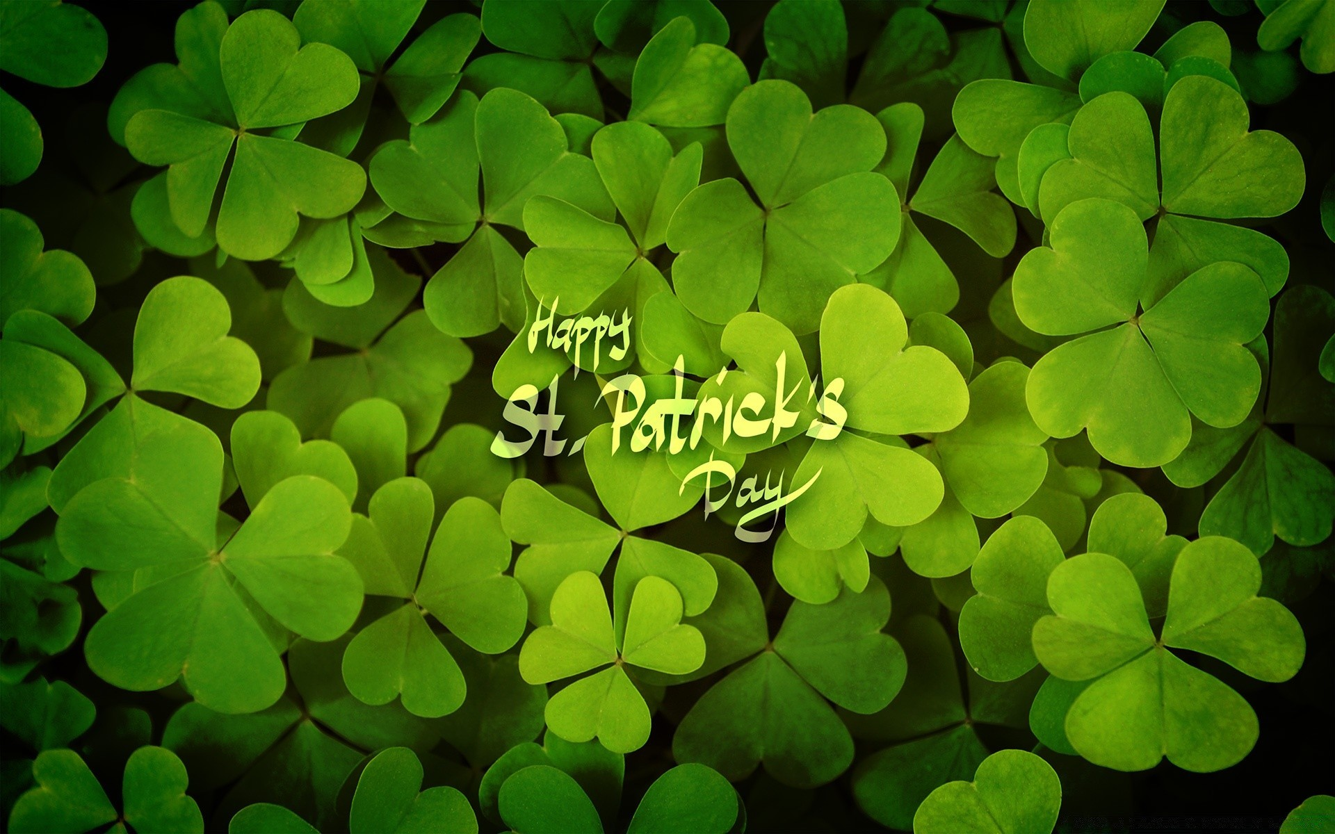 Happy St Patricks Day Free Wallpapers