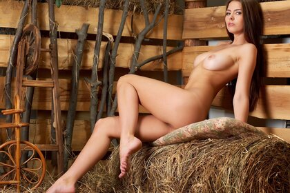 Naked girl in the hay