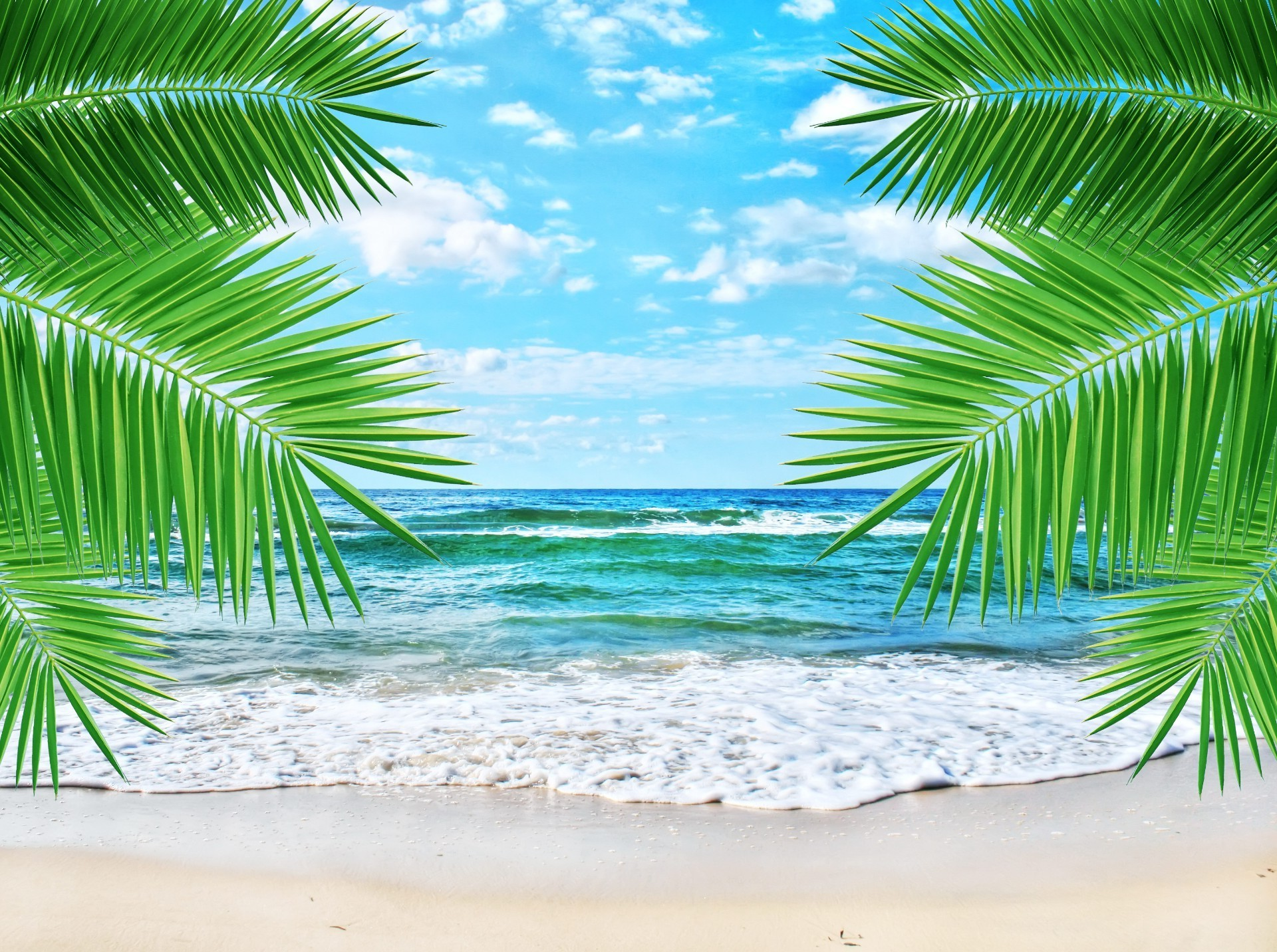 Sea and palm leaves