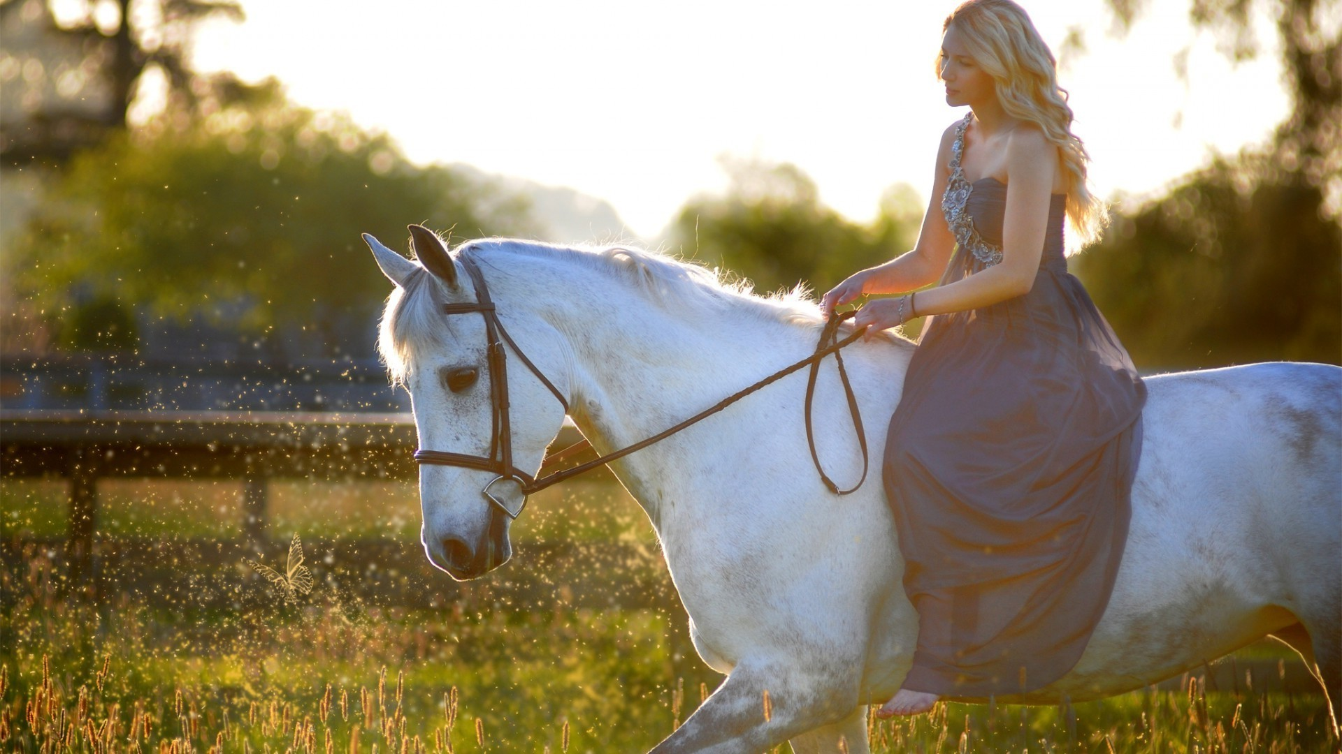 with animals one outdoors nature grass happiness horse cavalry mammal beautiful leisure summer hayfield motion lifestyle enjoyment woman love sitting girl blur