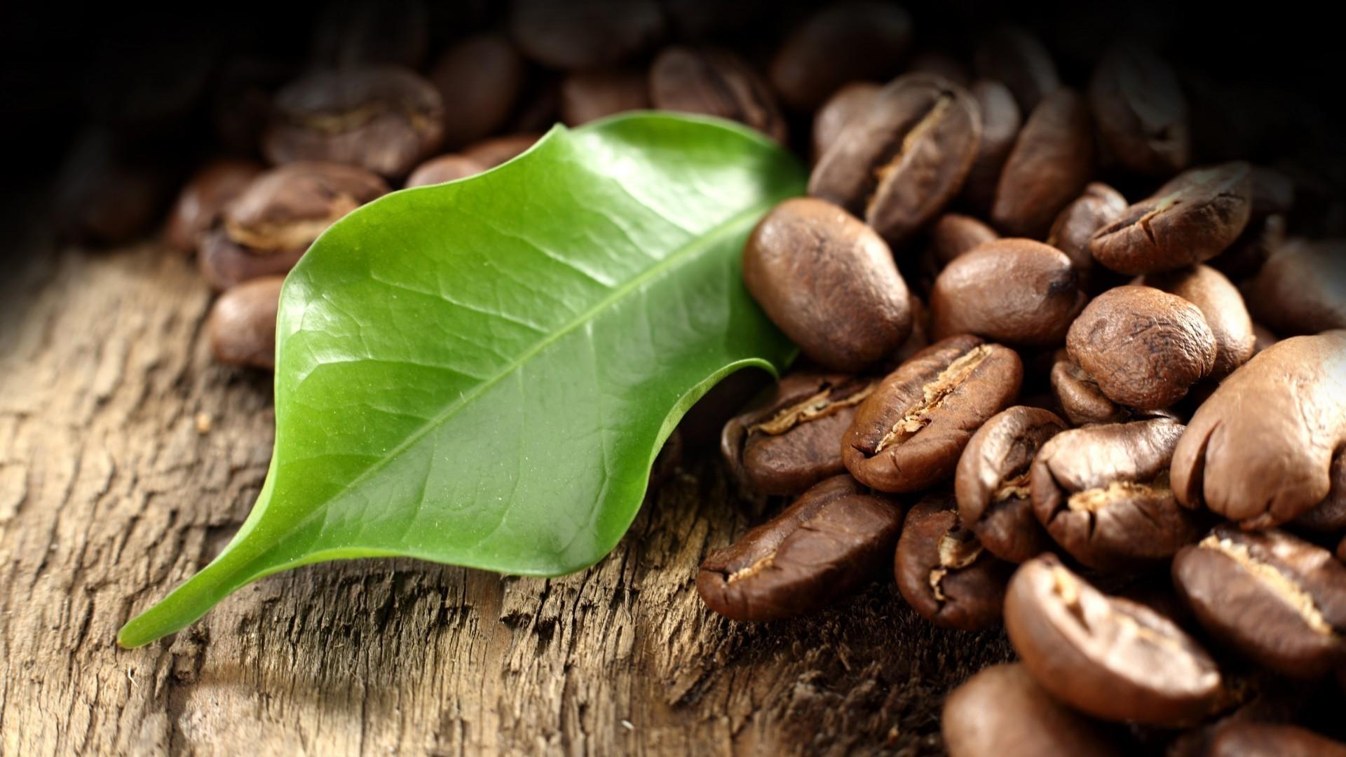 Кофе зерна  № 142016 загрузить