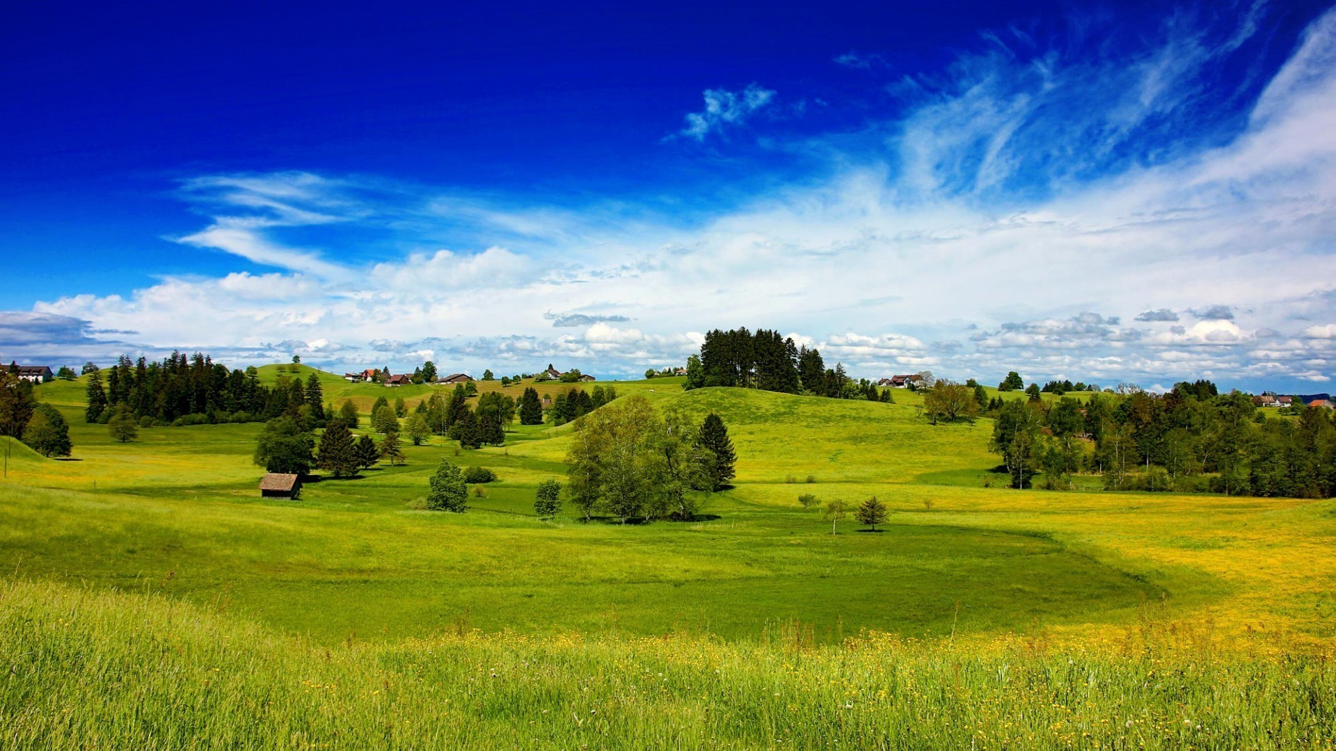 fields meadows and valleys landscape nature hayfield field agriculture tree grass countryside rural sky summer pasture outdoors farm country hill grassland scenic idyllic