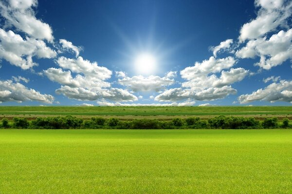 A wide green field, white clouds, blue sky