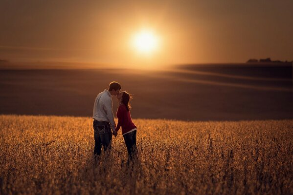 Couple in love kissing in the middle of a wide, Golden field