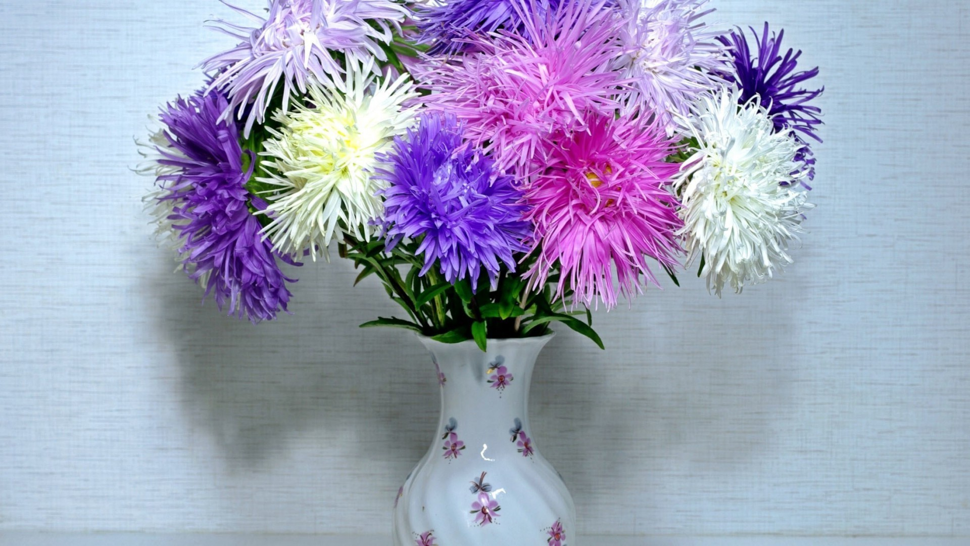 Asters in a vase