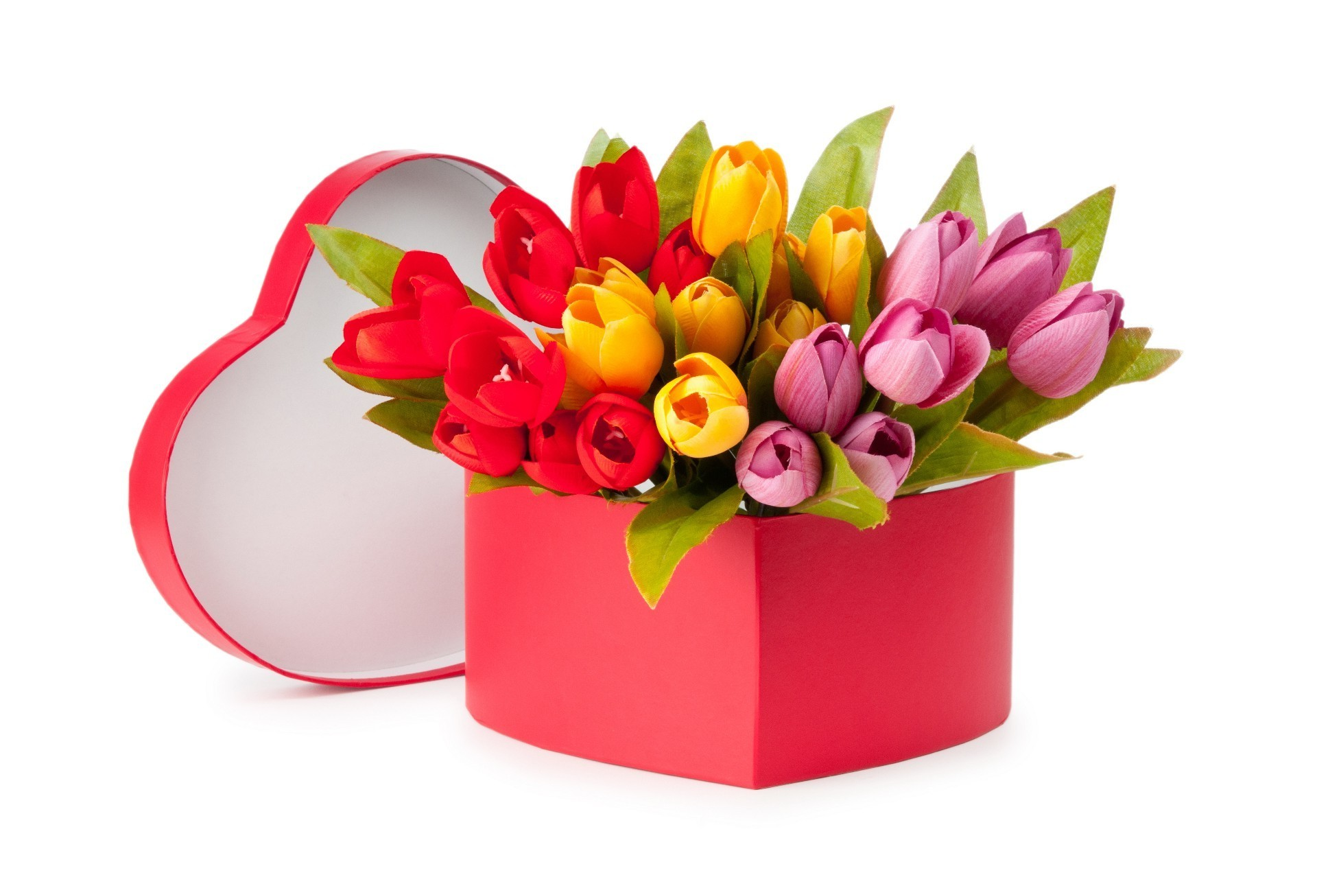 tulips gift flower birthday bouquet decoration leaf flora nature isolated easter color floral celebration desktop love bright season beautiful