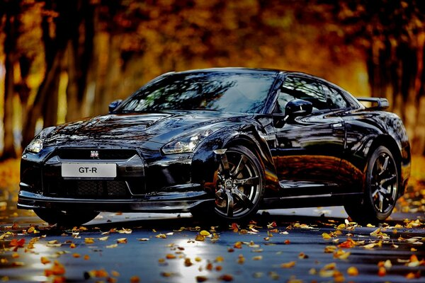 Nissan Skyline GTR Autumn