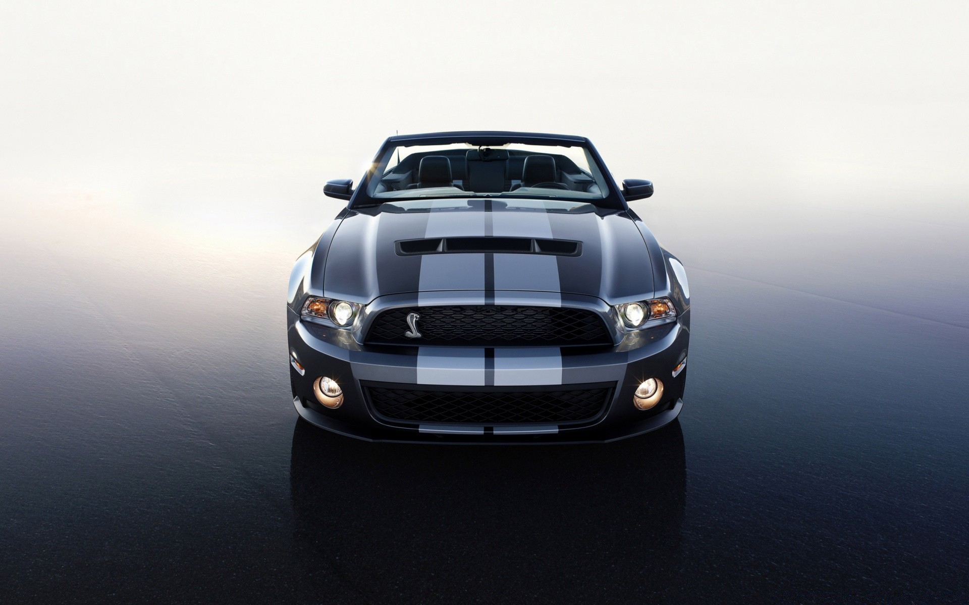 Ford Mustang Shelby Convertible IPhone Wallpapers For Free