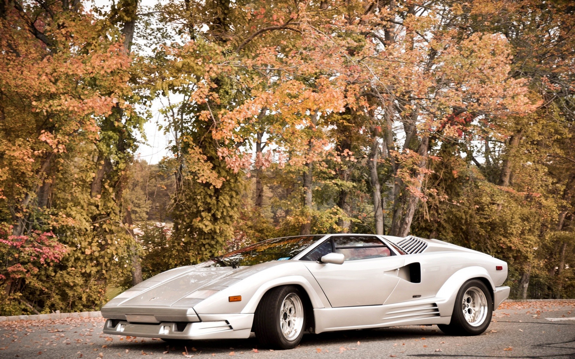 Lamborghini Countach Iphone Wallpapers For Free