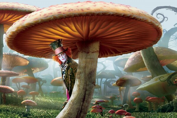 Mad Hatter, Alice In Wonderland