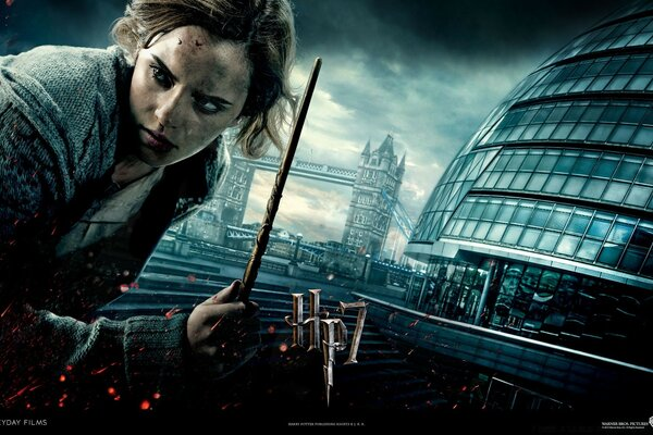 Harry Potter And The Deathly Hallows - Hermione