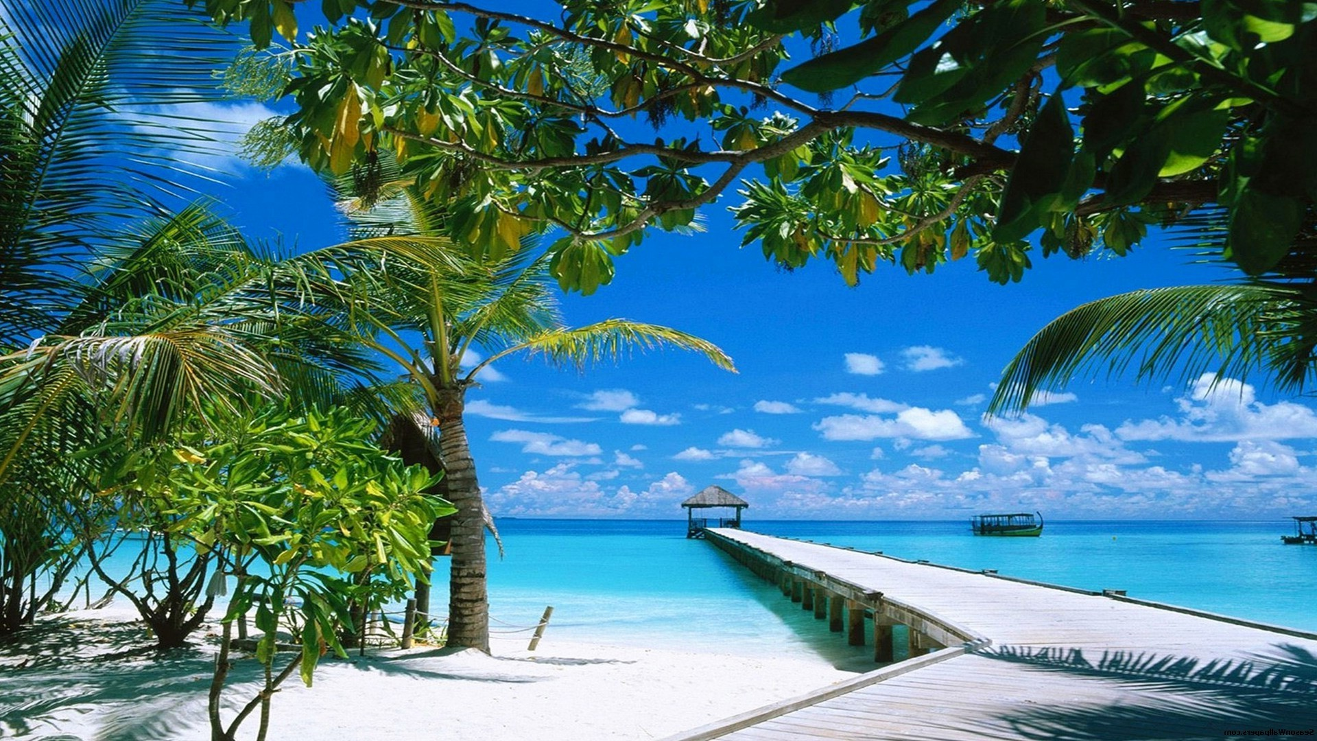 An Island Paradise With White Sand Android Wallpapers For Free