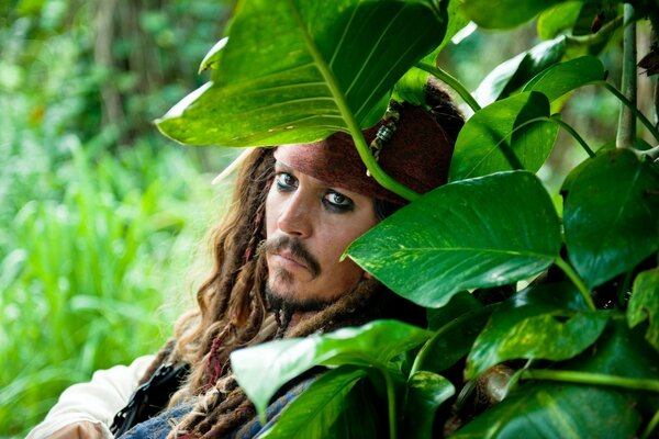 Pirates Of The Caribbean On Stranger Tides, Johnny Depp