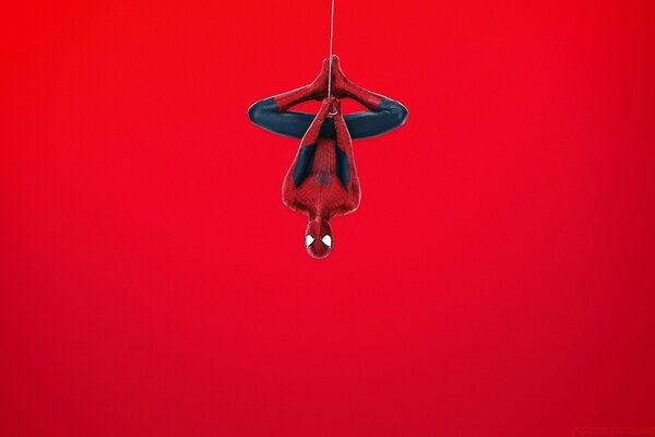 Spider Man (Red Background)