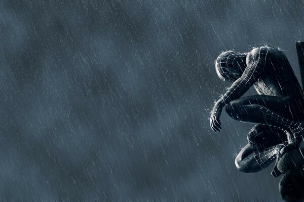 Spider Man In The Rain