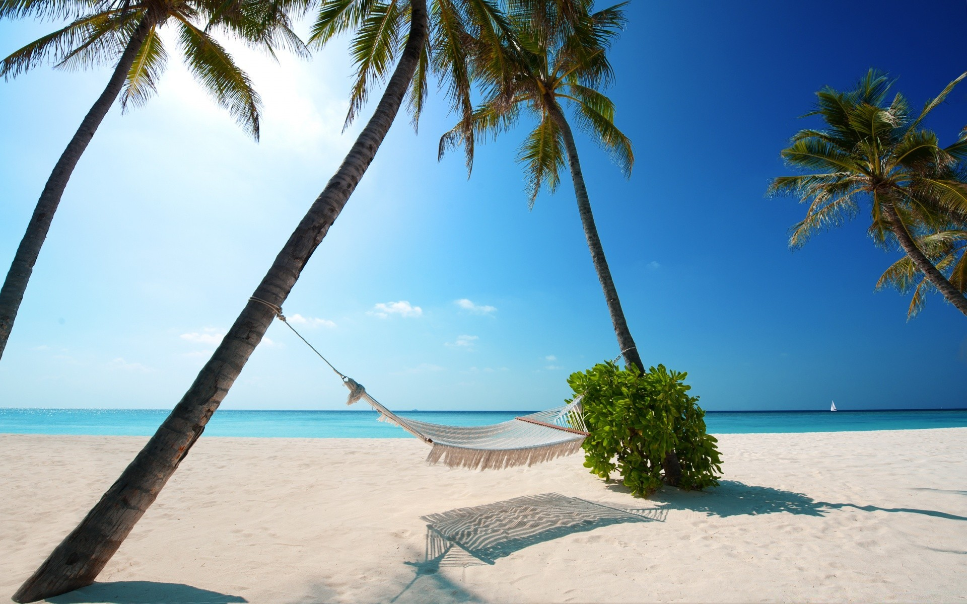 Phrase... super, tropical beach desktop your place