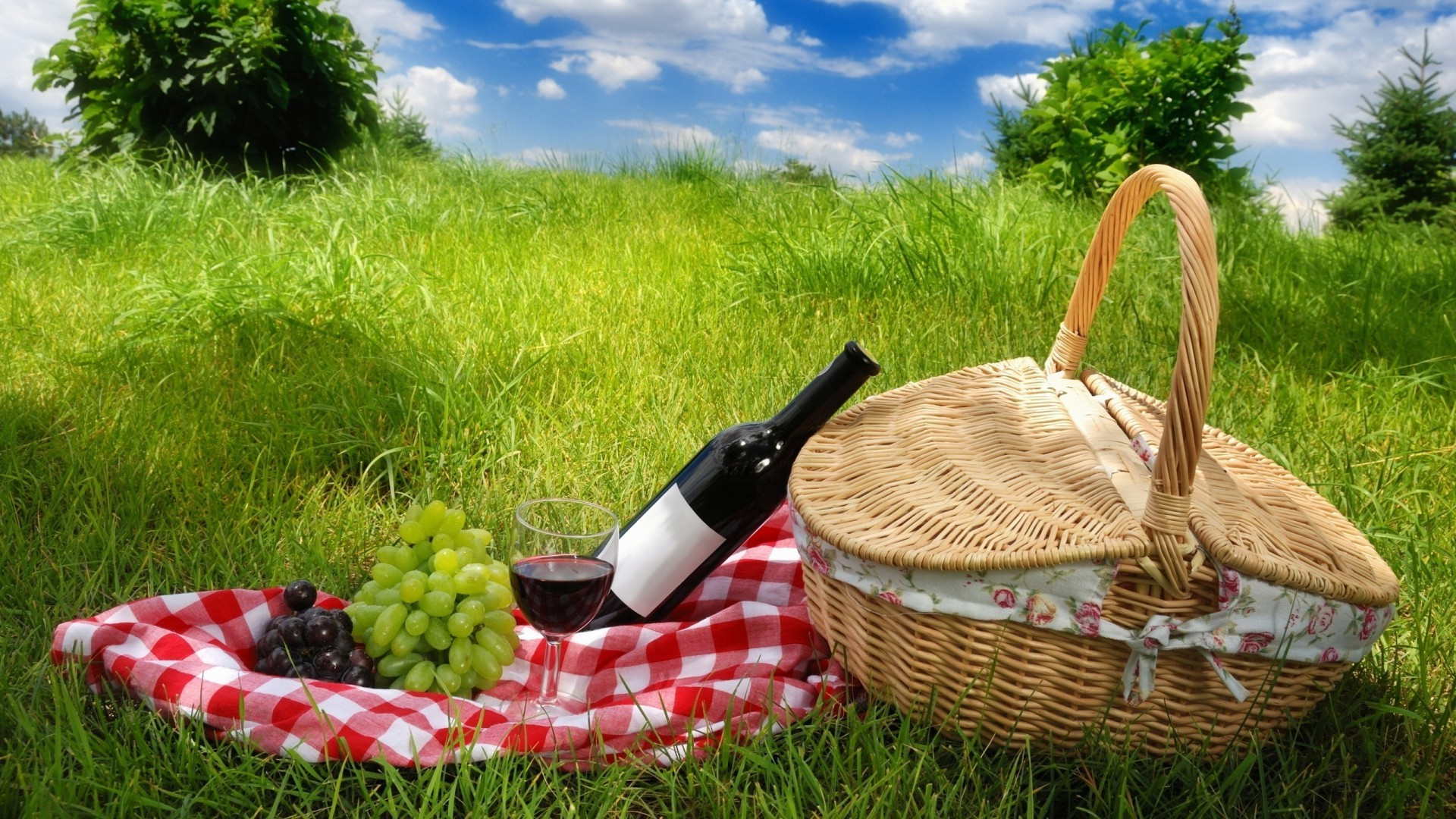 Picnic basket, wine, grapes