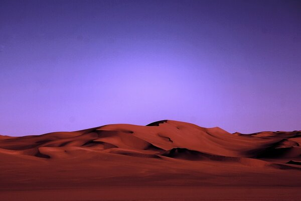 Desert Night