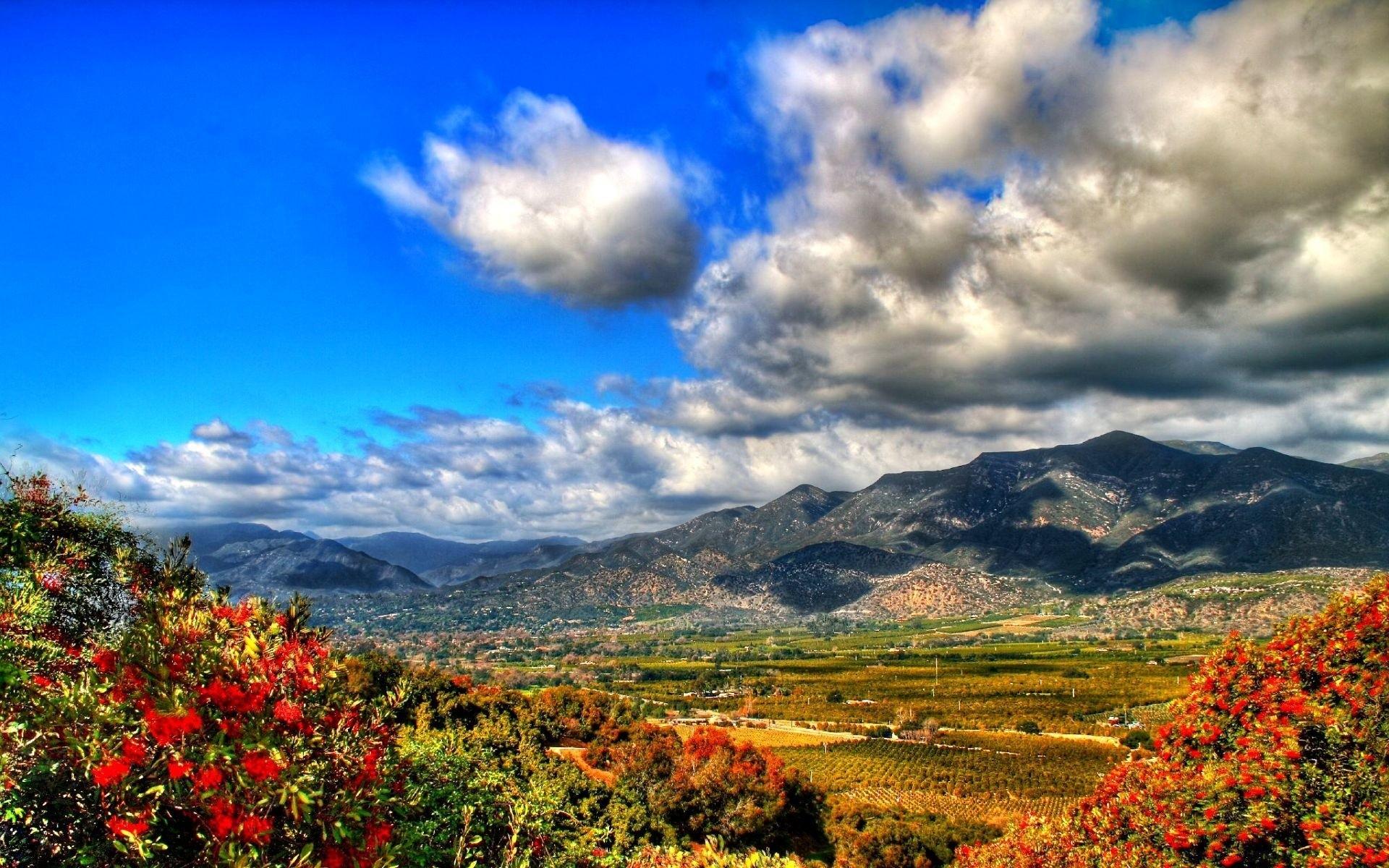 горы растительность небо скачать