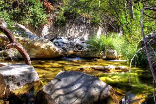 Mountain Creek HDR
