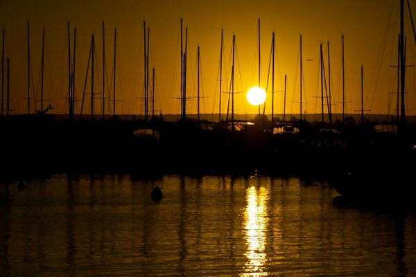 Sunrise Over The Masts Of Matilda Bay