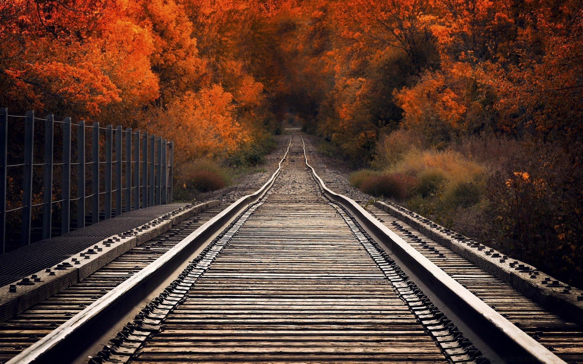 View From Railway Bridge Autumn - Phone