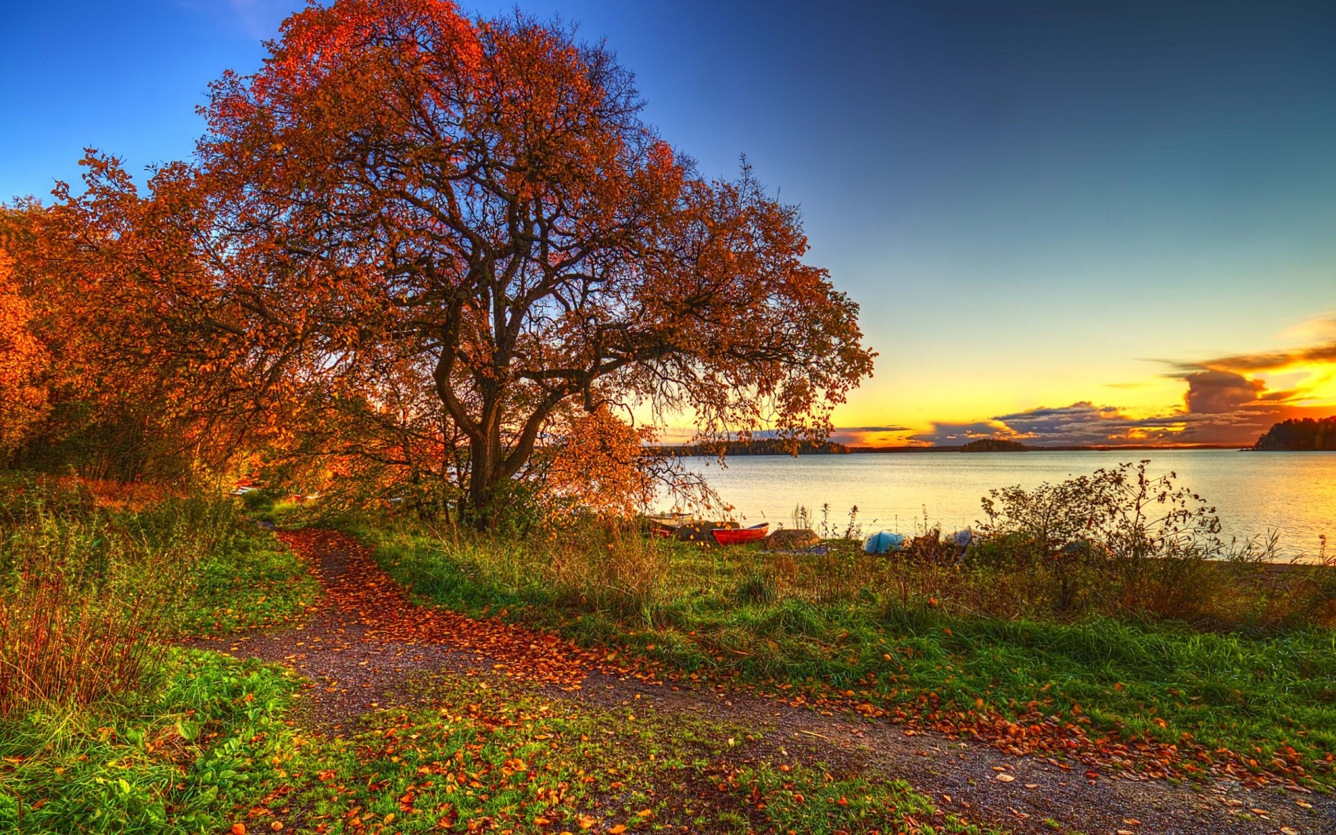 Autumn Scenery Android Wallpapers For Free