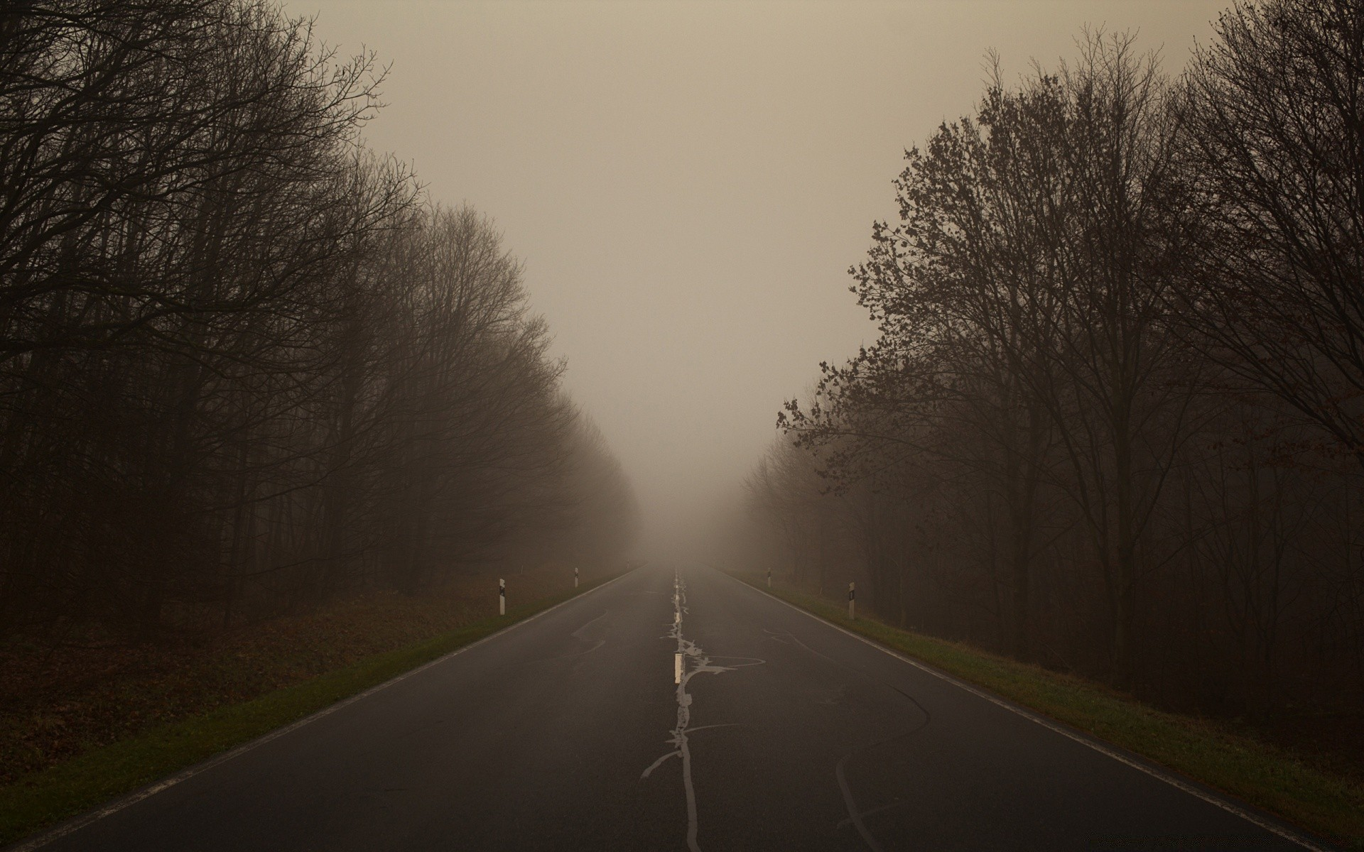 On A Foggy Day Android Wallpapers For Free