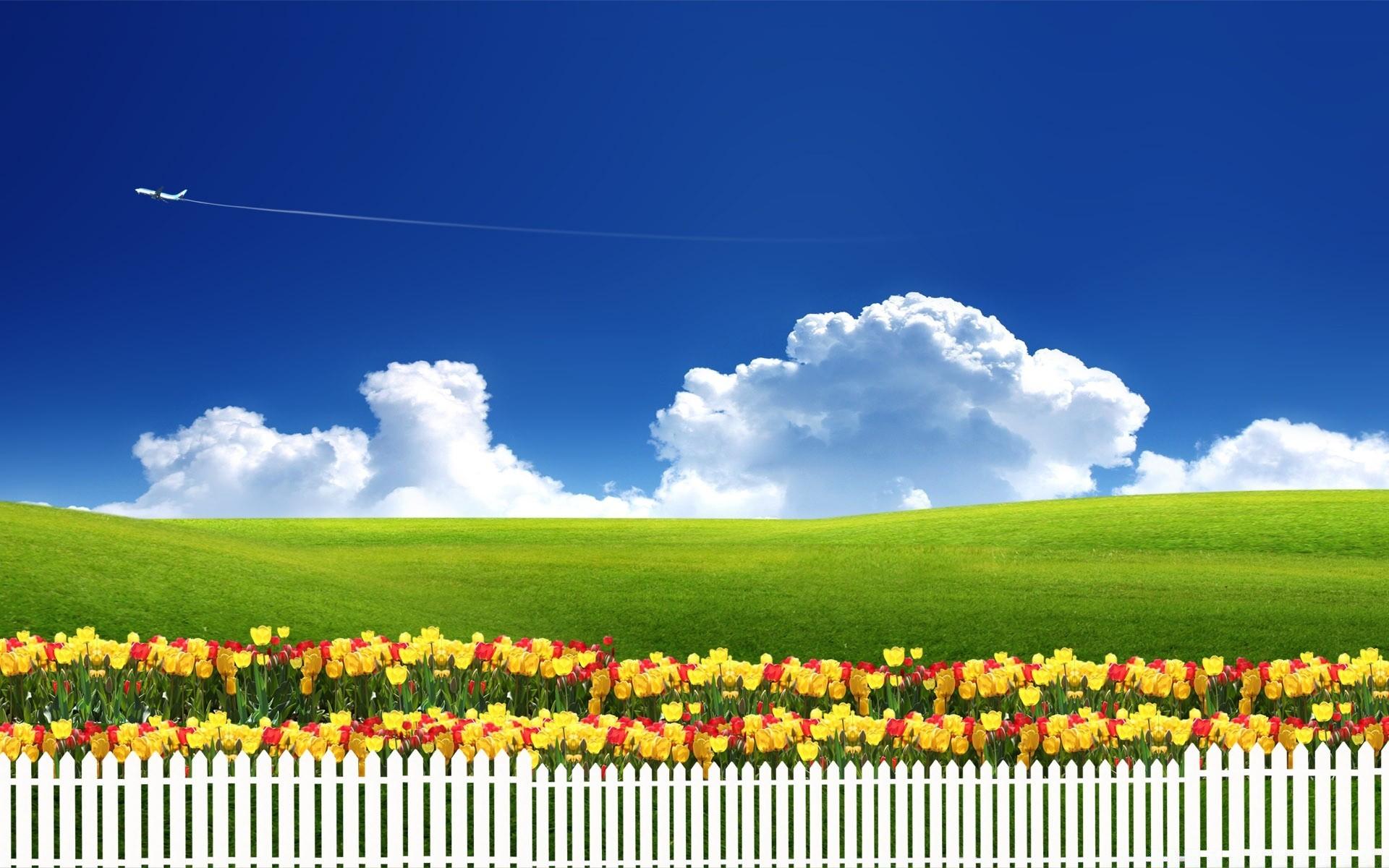 Зеленое поле, забор без смс