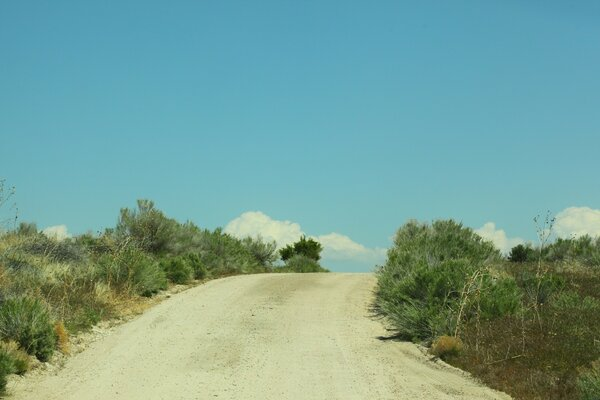 Sandy Road and Scrub Brush, Antelope Island, Utah