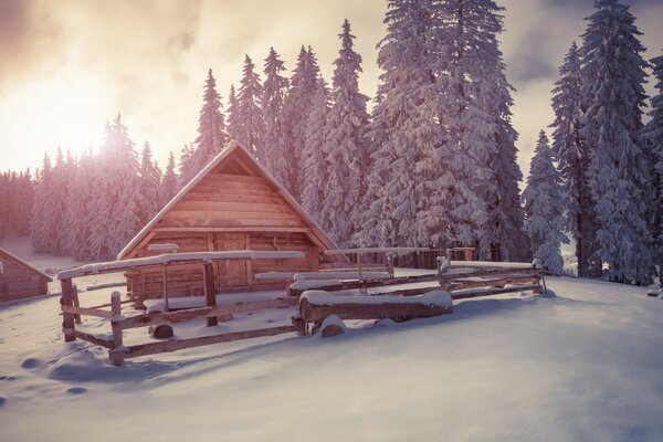 Winter Wooden Houses Under Snow