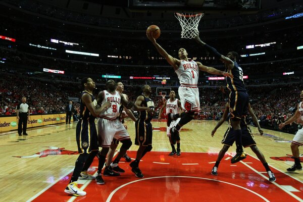 NBA Basketball Chicago Bulls