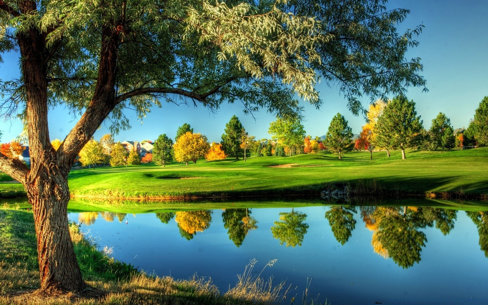 golf tree grass landscape nature lake sky scenic outdoors summer reflection pool park wood water hayfield sight rural cloud river