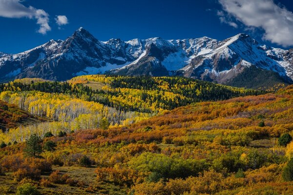 Mountain Landscape In Aspen, Colorado