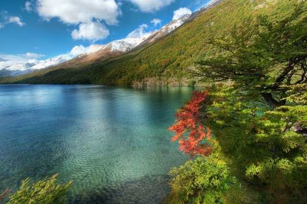 Lake In Argentina