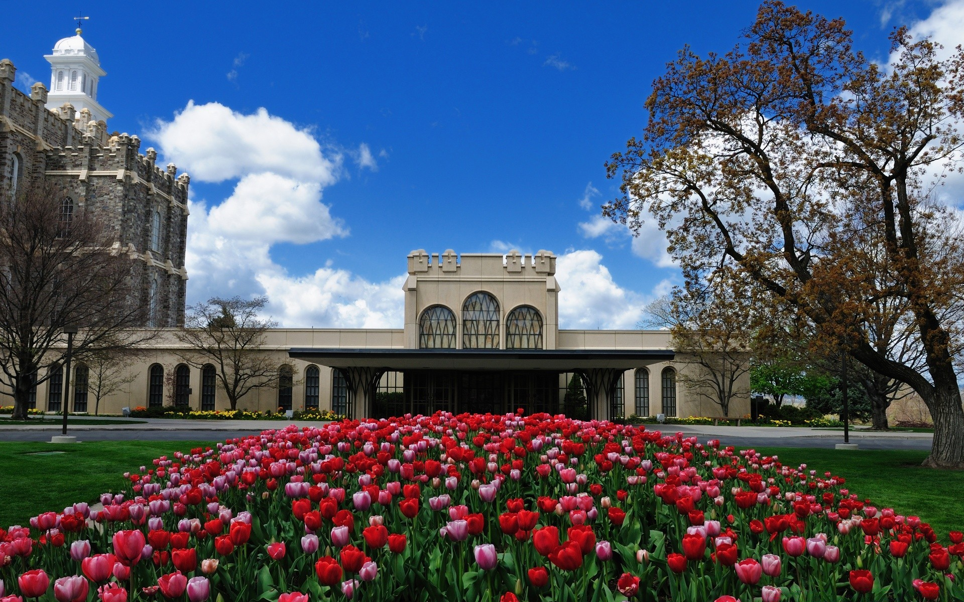 Logan LDS Temple Android Wallpapers For Free