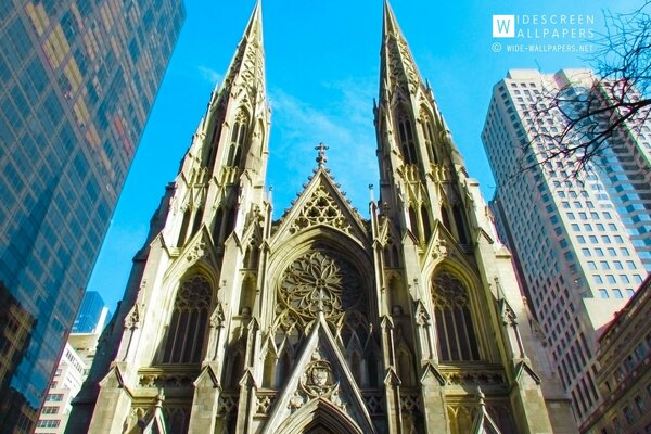 The Cathedral of St Patrick, New York City