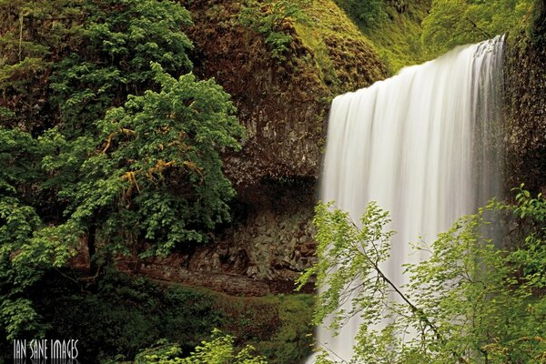Silver Falls City, Oregon