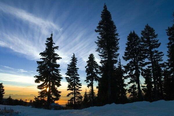 November Sky, Mount Seymour, British Columbia