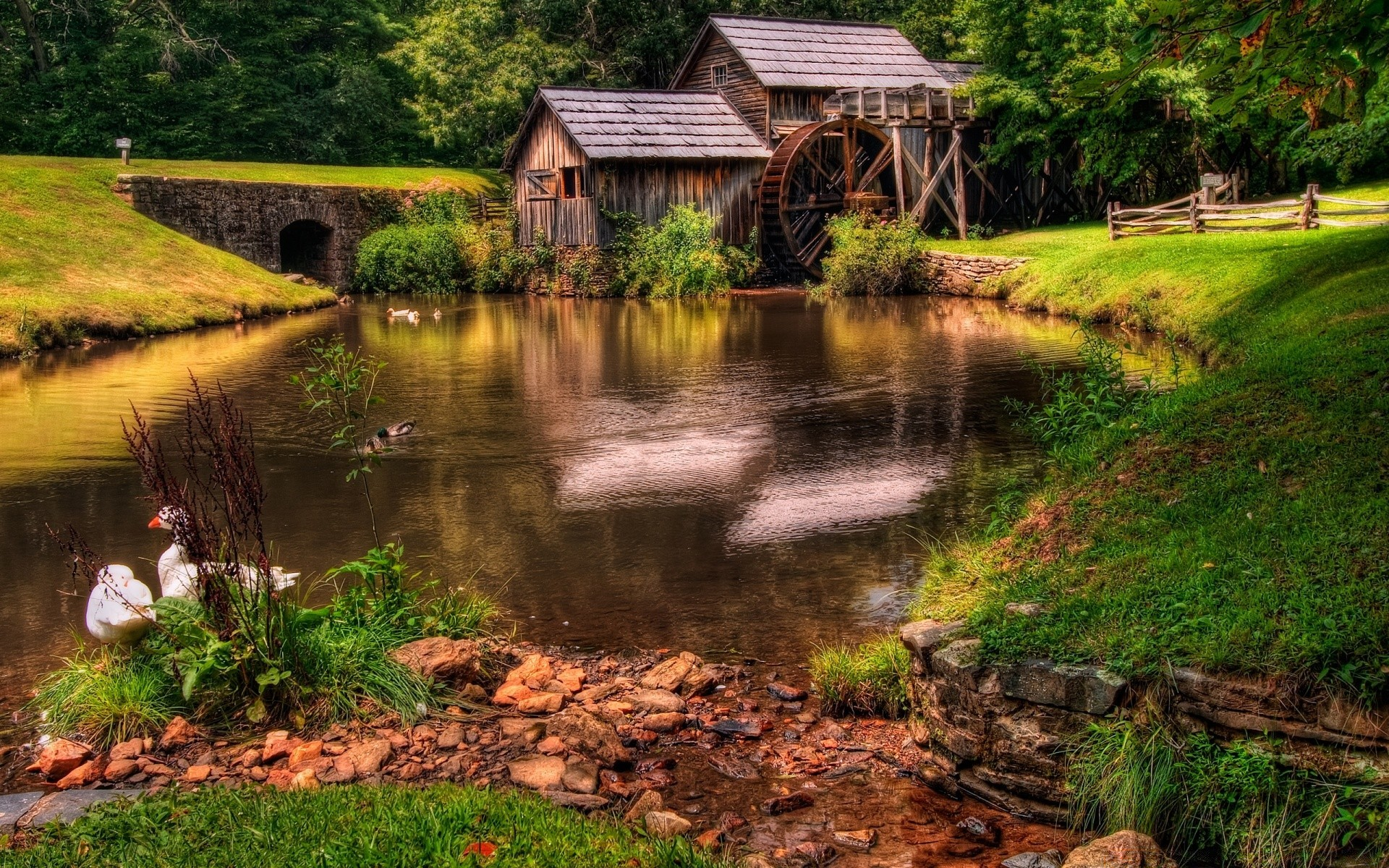 landscapes water wood nature river outdoors landscape grass bridge tree rural travel fall lake leaf countryside pool summer rustic scenic