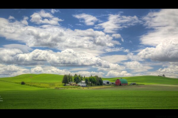 Farm on Joe Babbitt Road between Colfax and Pullman, Washington