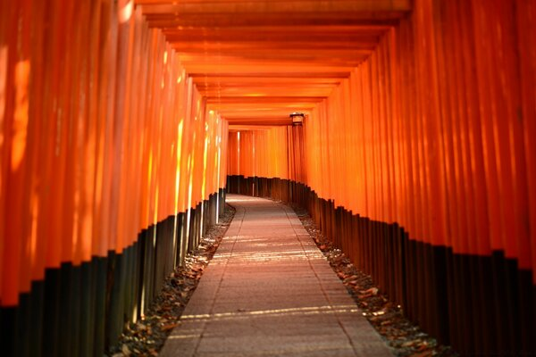 Torii Leading To The Inner Shrine