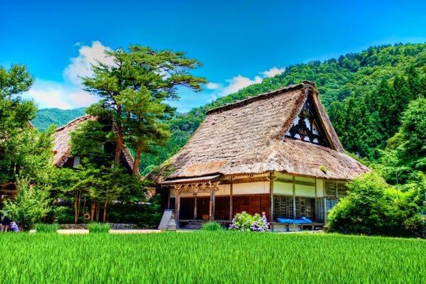 Shirakawago House