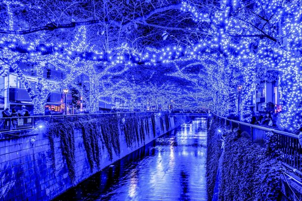 Tokyo Blue Grotto Japan